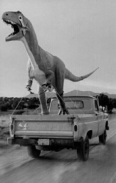 Raptor Rides Again