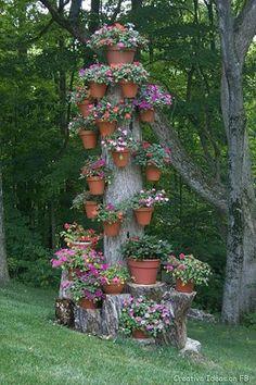 decoracion de un arbol
