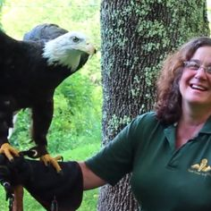 """Eagles Above"" Second Quarter - 2015 - Visit West Virginia : Visit West Virginia"