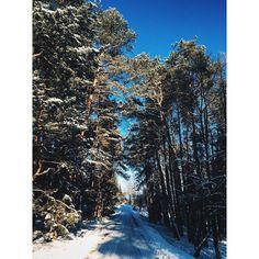 Winter road  #winter #winterinlithuania #iZiema2 #ilietuva @ilietuva #trees #forest #snow #snowyroad #vscolithuania #vscocam #vsco #rumšiškės #lithuania #bestofthebaltics #bestofbaltics by sraigukas