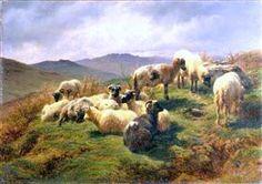 Sheep in the Highlands - Rosa Bonheur
