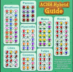 This is a great Animal Crossing New Horizons Hybrid Flower Guide! Animal Crossing Wild World, Animal Crossing Guide, Animal Crossing Memes, Animal Crossing Qr Codes Clothes, Animal Crossing Villagers, Animal Crossing Redd, Amazing Animals, Ac New Leaf, Pokemon