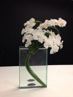 OVANDO Orchid Arrangements, Flower Designs, Orchids, Floral Design, Vase, Bouquets, Flowers, Modern, Beautiful