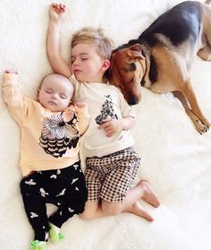 Months Later This Toddler Is Still Napping With His Puppy Dog - Theo beau cutest animal human pairing ever