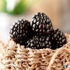 blueberry by RashadZaid  IFTTT 500px