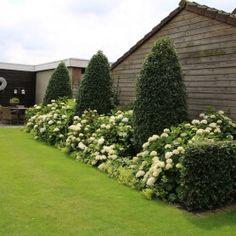 Tuinmeesters - projecten Garden Deco, Front Elevation, Dream Garden, Outdoor Gardens, Landscapes, Pictures, Gardening, Style, Gardens
