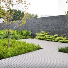 coyoacan corporate campus by dlc architects « Landscape Architecture Works Garden Landscape Design, Green Landscape, Modern Landscaping, Garden Landscaping, Landscaping Design, Small Gardens, Outdoor Gardens, Garden Architecture, Garden Structures