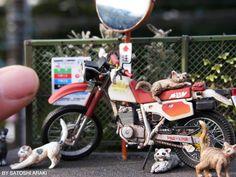 Satoshi Araki Dualsport Model