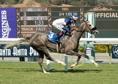 Jockey Tyler Baze got a good feeling Nick Alexander's Enola Gray would take to a new surface for her first grass start Oct. 15, 2016 when the Grazen filly warmed up and traveled up the Santa Anita Park hillside turf course.