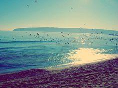 Varna, I want to go back!