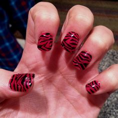 zebra :)