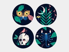 The finished set of nature illustrations/ icons.