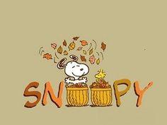 Snoopy and Woodstock Snoopy Halloween, Fall Halloween, Charlie Brown Quotes, Charlie Brown And Snoopy, Snoopy Wallpaper, Fall Wallpaper, Iphone Wallpaper, Peanuts Cartoon, Peanuts Snoopy