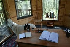 Who wouldn't feel more creative working in this treehouse in the woods? This is (or was) Neil Gaiman's writing shed. It was featured in a book called Shedworking. Neil Gaiman, Writing Studio, Writing Art, Writing Quotes, Writing Advice, The Graveyard Book, Shed Of The Year, Shed Interior, Art Of Manliness