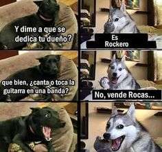 New Memes En Espanol Perros 55 Ideas Funny Shit, Funny Cute, Funny Jokes, Hilarious, Memes Humor, Humor Videos, Funny Images, Funny Pictures, Funny Animals