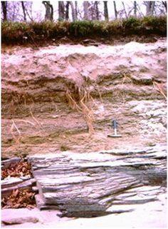 Jippo: Tutki ja ihmettele: Vedensuodatin luonnonmateriaaleista