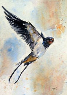 Swallow SOLD