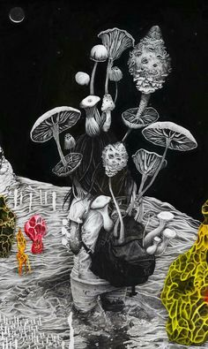 Celeste Byers (San Diego, CA, USA) - From Eternal Spring exhibition at Low Gallery Paintings Psychedelic Experience, Psychedelic Drugs, Trippy Drawings, Art Drawings, Psychadelic Art, Acid Art, Psy Art, Abstract Pictures, Mushroom Art