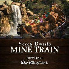 Seven Dwarfs Mine Train! °o°