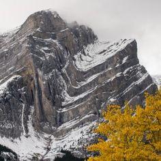 AB. Folds on Mt Kidd so. peak