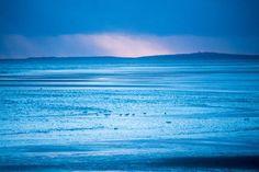 #clouds #sea #beach #terschelling #vscofilm #vsco #vscogrid #groenestrand #igersholland #contemporaryphotography #instadaily #naturephotography #calmversation #oftheafternoon #contemporary #sunlight #mooinederland #super_holland #Loves_Netherlands #vscomafia #dutch_connextion #igfriends_valledaosta #wanderlust #vscocam #landscapelovers #holland_photolovers #landscapes #landscapephotography