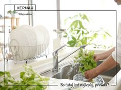Zastanawiasz się jaki zlewozmywak kupić do swojej kuchni? Podpowiemy Ci, że te wykonane ze stali nierdzewnej odporne są na działanie wysokich temperatur! Na dodatek mają uniwersalny kolor, który dobrze współgra z różnymi aranżacjami tego wnętrza. Taka kuchnia zawsze będzie piękna :)!  .. bo w niej chcemy czuć się najlepiej :*!