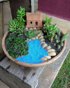 32 Enchanting Fairy Garden Design Ideas You Will Love - The journey to spending a week with my grandchildren began on Monday. I had double checked the car and it looked like everything was packed: suitcase,. Fairy Garden Pots, Indoor Fairy Gardens, Dish Garden, Fairy Garden Houses, Miniature Fairy Gardens, Indoor Garden, Succulent Gardening, Planting Succulents, Succulent Garden Diy Indoor