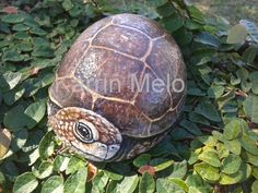 Garden art/Painted Rocks / Hand Painted Baby Tortoise Turtle stone / Turtle painting /  Yard art  / door stop / book end on etsy