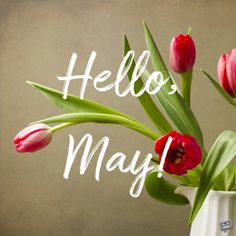 """Our floral collection of May cards is made to be shared to spread the joy that this month brings. We say a colorful big """"Hello, May! Days And Months, Months In A Year, Hello October Images, Hello March, Hello May Quotes, Spring Quotes, New Year Pictures, Month Flowers, Best Birthday Wishes"""