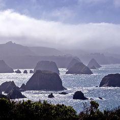 Cuffy's Cove, Mendocino Coast, California by Rita Crane Photography