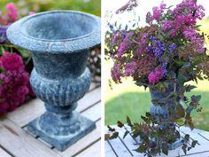 BOTANICALS — COCOON HOME | H花艺 | Pinterest | Plants