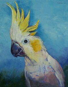 Cockatoo | Michael Creese