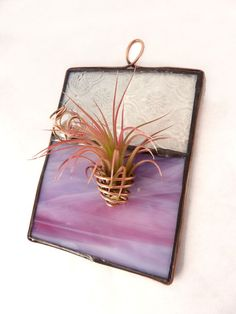 Stained Glass Panel Air Plant Holder  Lilac Mini by glassetc