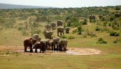 Image from http://earthpics.me/uploads/Kruger-JAR.jpg.