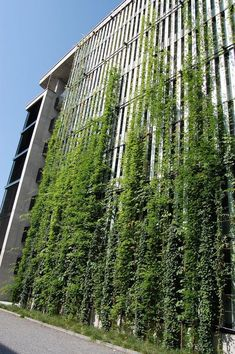 50 Green wall Design Inspiration is a part of our collection for design inspiration series.Green wall Design Inspiration is an inspirational series Green Architecture, Sustainable Architecture, System Architecture, Building Facade, Green Building, Landscape Walls, Landscape Design, Vertical Green Wall, Green Facade