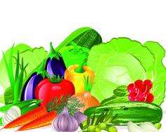 Fresh vegetables vector set 01