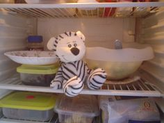 Seguridad en la heladera? No se puede comer hasta la ensalada! Garamonda, está despedido!
