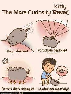 Curiosity did not, in fact, kill the cat. Nor did it bring it back. To MARS baby!