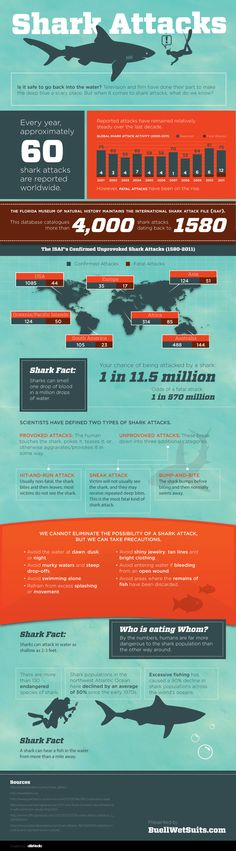 Infographic: Anatomy of a Shark Attack