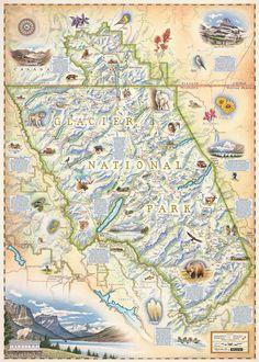 Glacier National Park Map, hand-drawn National Park map - Xplorer Maps
