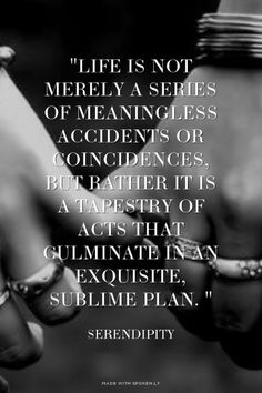 """Life is not merely a series of meaningless accidents or coincidences, but rather it is a tapestry of acts that culminate in an exquisite, sublime plan. "" ~ Serendipity"
