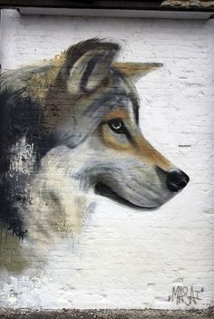wolf on painted brick