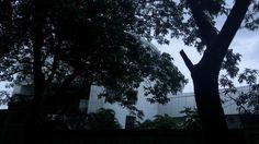 """#MonsoonAtWWI by #WWIStudent Shubham Baniya """"Natural beauty that we can observe at WWI."""""""