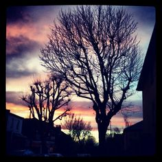 London skies at 6am! #london #winter #chilly #sunrise #trees #colours