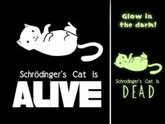Schrodinger's Cat - Alive or Dead? $20 from TeeTurtle