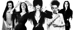 Lily Munster, Vampira, Elvira, the Bride of Frankenstein, and Morticia Addams - queens of horror. movies TV Addams Family Munsters Halloween banner art wallpaper background