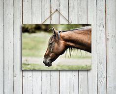 Barron - print - Brown horse decor - Brown wall decor - Brown horse wall art - Brown horse - h Western Wall Decor, Brown Wall Decor, New Bedroom Design, Horse Wall Art, Hanging Canvas, Brown Horse, Brown Walls, Artist Canvas, Cottage Chic