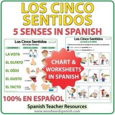 Los cinco sentidos en español. The five senses in Spanish - Worksheets and Summary Chart.