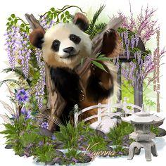 "✿➹⁀✿CT Tags for Kajenna ✿➹⁀✿ PTU TAG CT with the beautiful Tube of Kajenna ""Panda"" Paint Shop Pro compatible PSD character separa. Panda Painting, Panda Art, Paint Shop, Photo Art, Cute Animals, Arts And Crafts, Bear, Printables, Character"