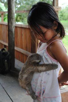 なまけものの赤ちゃんが小さな女の子に抱きついてる姿 和みまくりなんですけど(*´д`*)